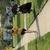 Thumbnail small square 8c375b75 e049 461f ae52 33b25405879f